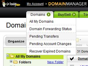 Domains > Pending Transfers